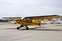 Piper Super Cub [CS-AIA]